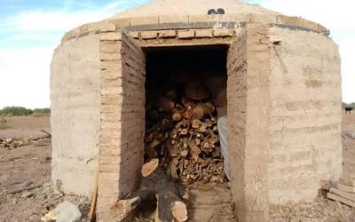 Producen Carbón Vegetal Sustentable Del Mezquite La Voz De